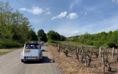 Top des activités en plein air à faire tout près de Lyon