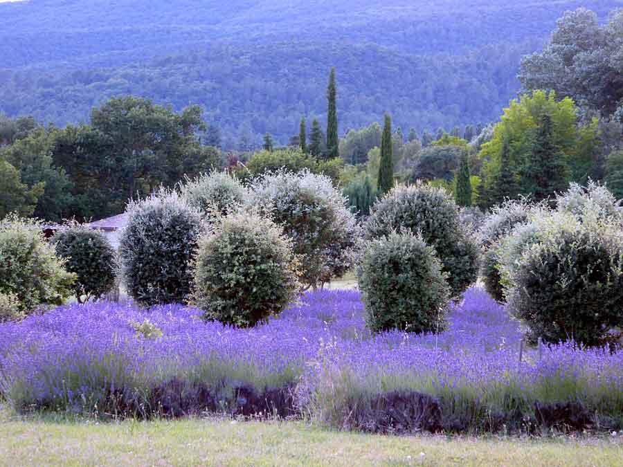 séminaire en drome provençale