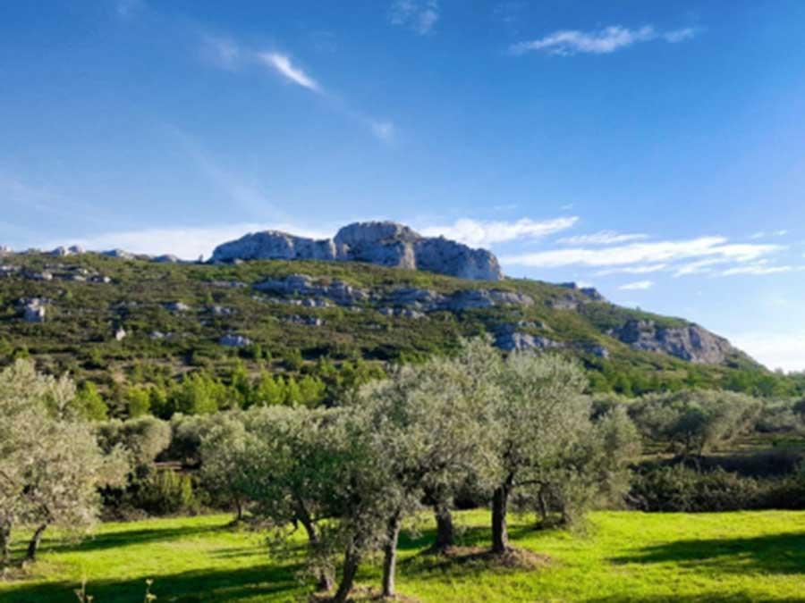 séminaire les Baux de Provence